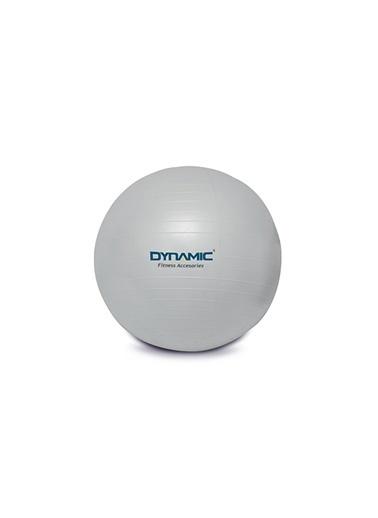 Dynamic Fitness Topu 1Dyakgymball-013 Gri